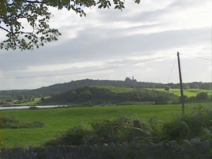 View of Dromore townland, with Dromore castle in the background