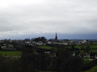 View of Kilfinane from Ballyriggin townland